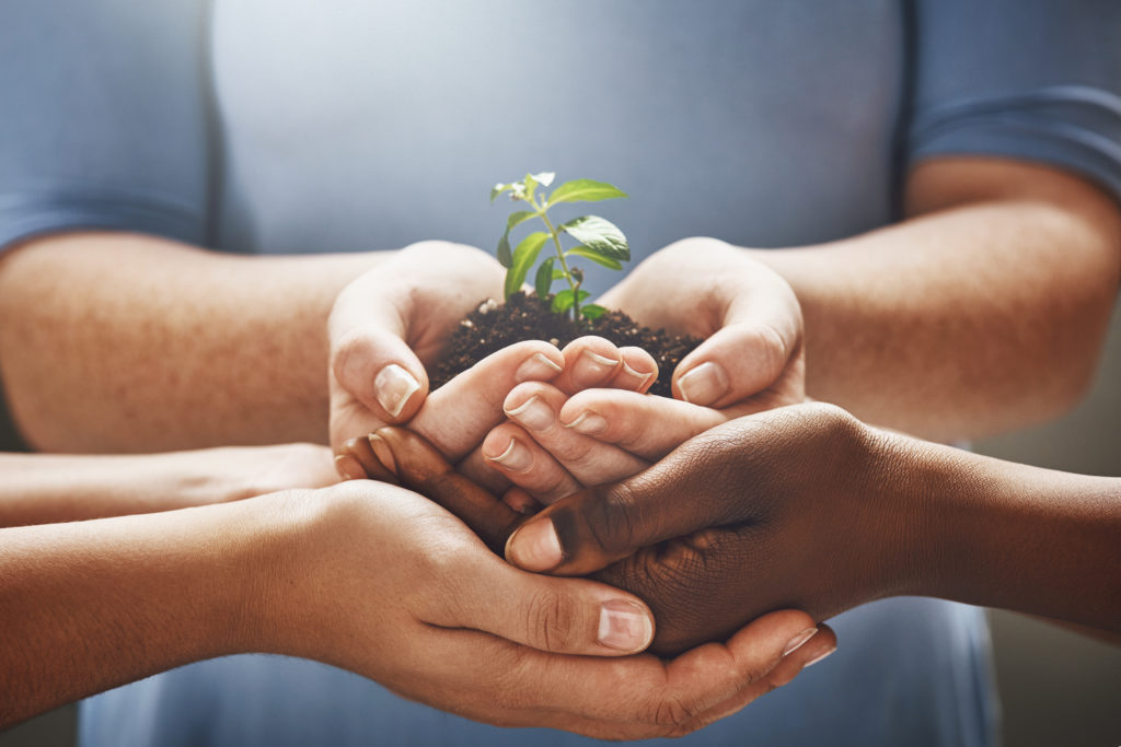 Shot of a group of hands holding a plant growing out of soil